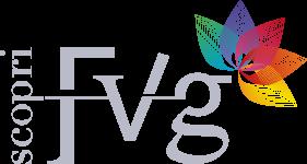 Scopri FVG
