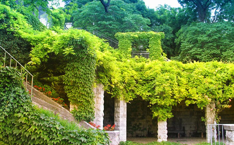Giardino_San_Michele_Trieste
