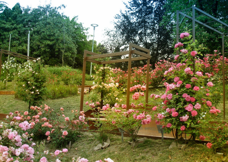 Parco_Galvani_Roseto_Pordenone1