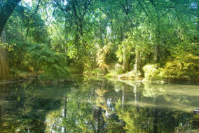 Parco_di_Fraforeano_Udine1