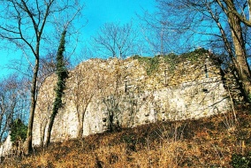 Castello_Buja