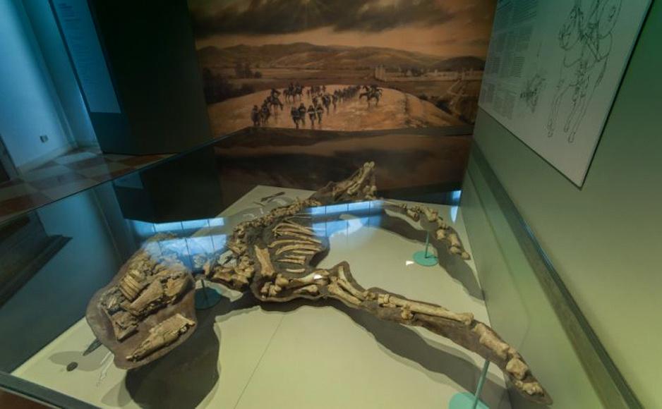 Museo_Archeologico_Nazionale_Cividale