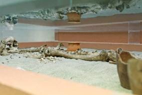 Museo_Civico_Archeologico_Codroipo