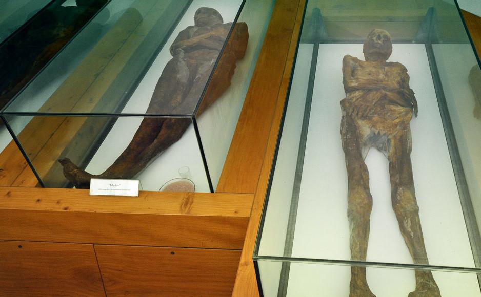 Mummie_Venzone