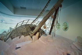 Museo_Nazionale_Antartide_Trieste