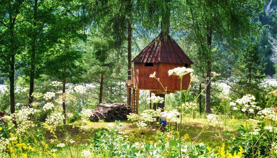 Tree-Village-claut